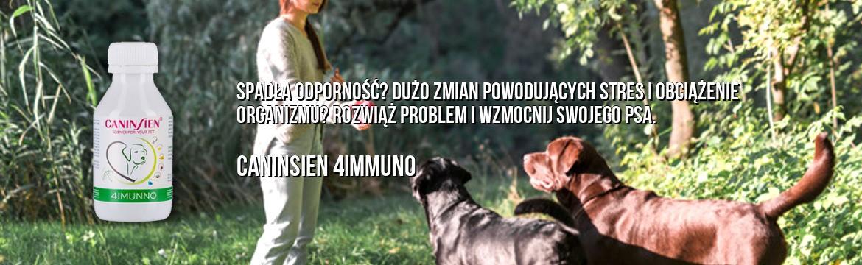 CANINSIEN 4IMMUNO